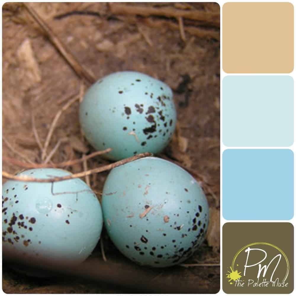 Robin eggs palette with Blues and Browns