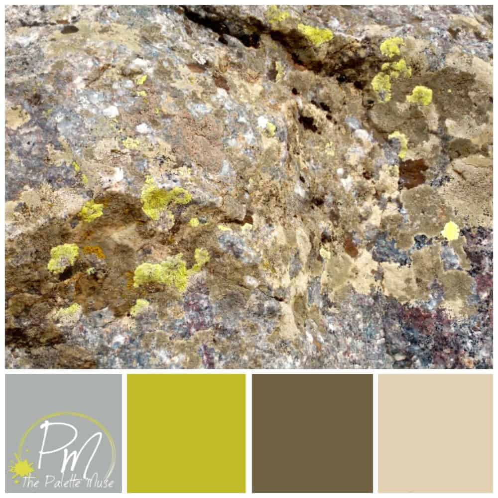 Color Palettes The Palette Muse