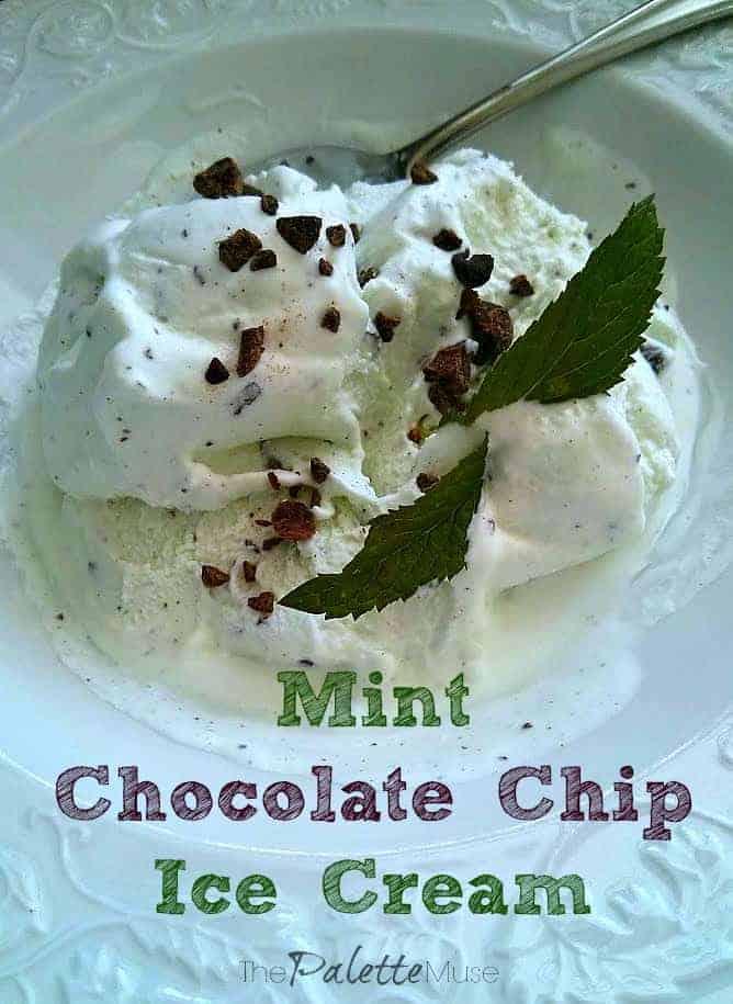 Mint-Chocolate-Chip-Ice-Cream-Recipe