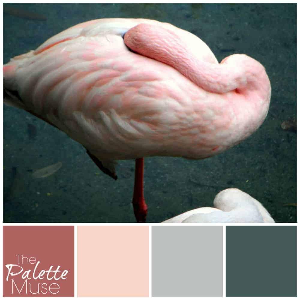 Hidden Flamingo Palette