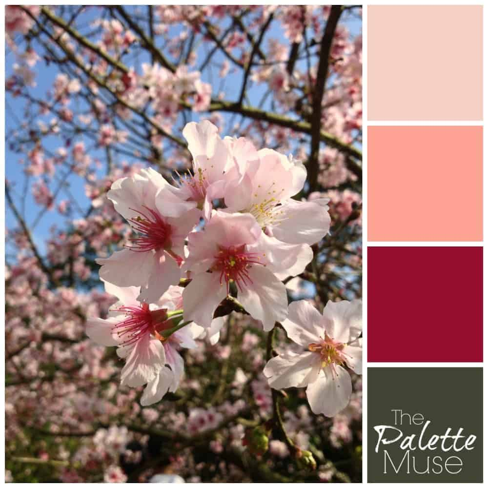 This delicate spring blossoms palette blooms with vibrant pinks and grounded green.