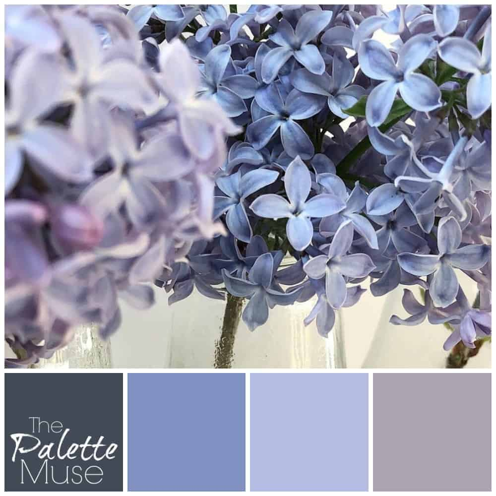 Lilac palette with shades of blue and purple