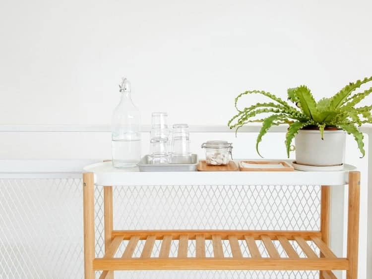 Wooden cart with plant and drinking water