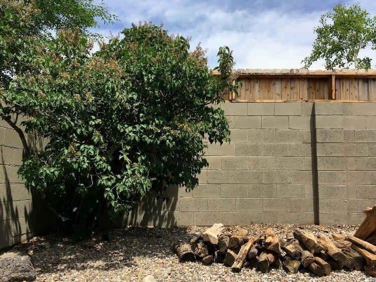 A painted concrete wall looks better than plain concrete blocks.