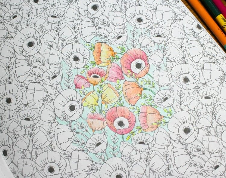 Partially completed coloring page of red and orange poppies.