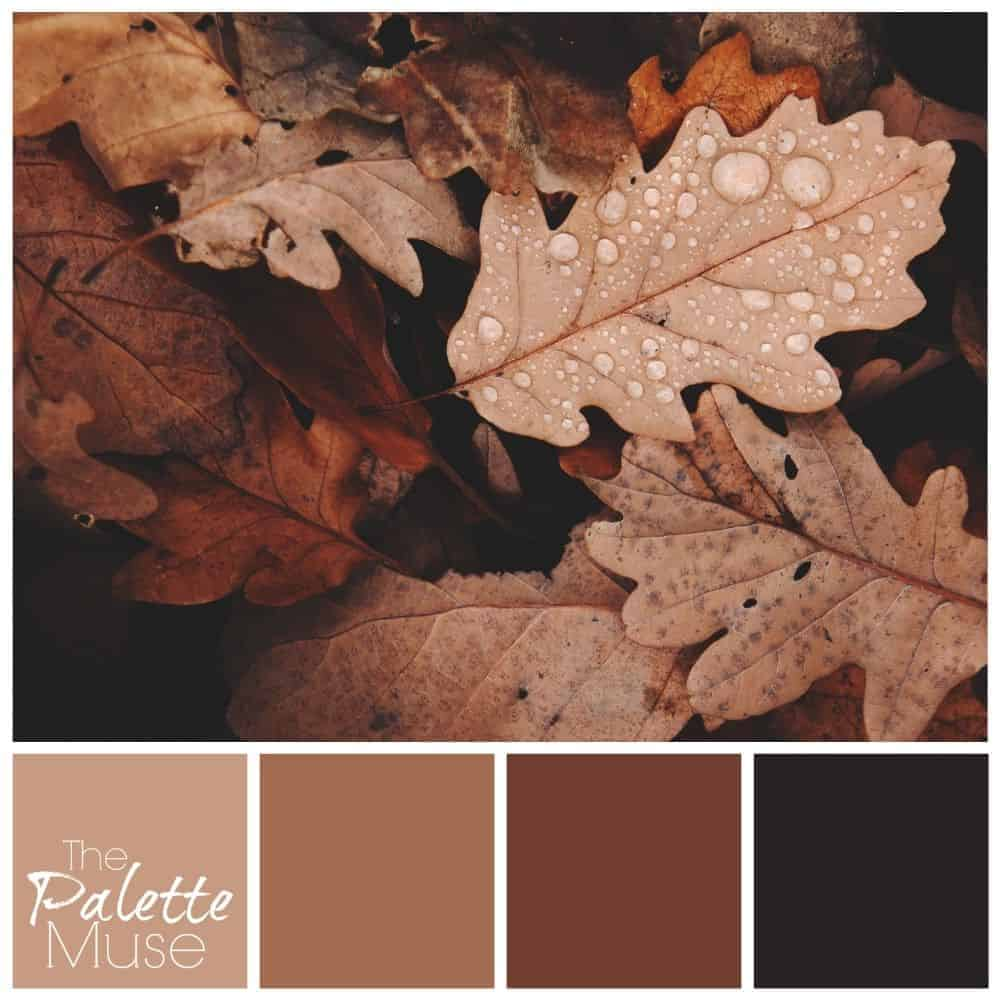 Rusty Fall Leaves Palette with reds and browns