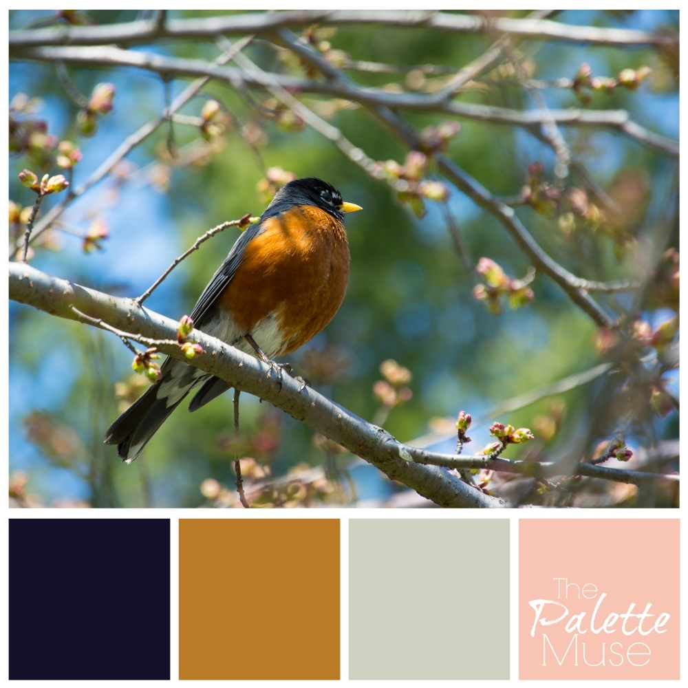 Modern spring palette based on a bird, with dark navy and mustard, and light gray and pink.