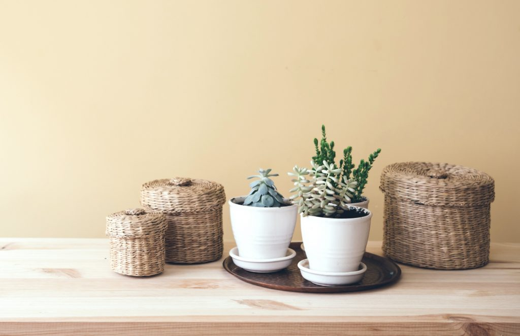 A collection of baskets and potted succulents for staging a home