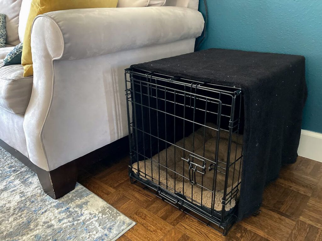 Dog crate covered with black blanket next to beige couch
